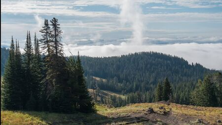 early morning panning time lapse of yellowstone national park from dunraven pass 스톡 콘텐츠