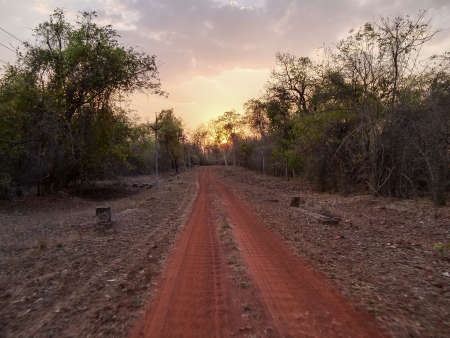 the setting sun behind a road at tadoba andhari tiger reserve Banco de Imagens