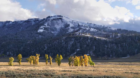 mountains in lamar valley with early autumn snowfall in yellowstone national park