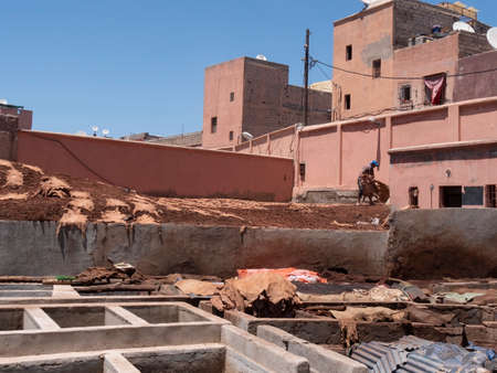 MARRAKESH, MOROCCO- JUNE, 10, 2019: worker collecting leather drying in the sun at one of the ancient tanneries in marrakesh 新闻类图片