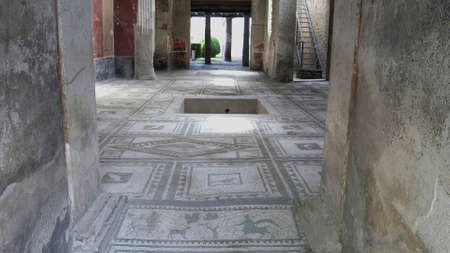 NAPLES, ITALY- JUNE, 13, 2019: a centaur mosaic at pompeii 新闻类图片