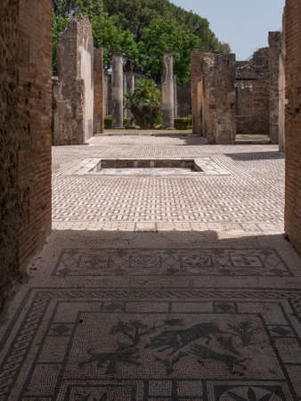 NAPLES, ITALY- JUNE, 13, 2019: mosaic of dogs hunting a boar at pompeii ruins