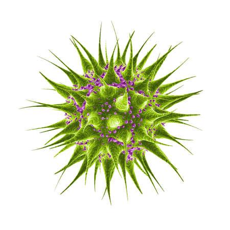 microbio: germen verde y p�rpura del backteria del microbio