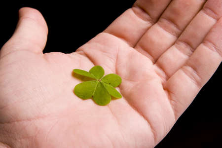 Hand holding clover on black background Stock Photo - 520744