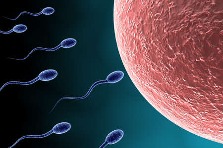 human sperm: Many blue Sperm approaching egg