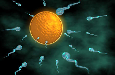 challenging sex: 3d sperm on their way to an egg