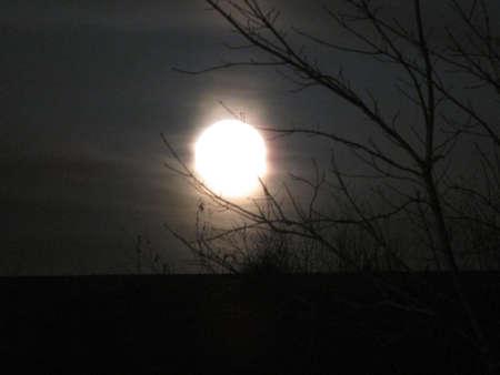 Winter Moon Фото со стока