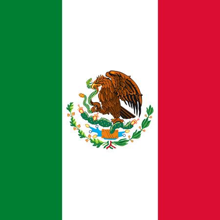 Mexicaanse vlag Stock Illustratie