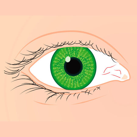 green eye of a white race woman
