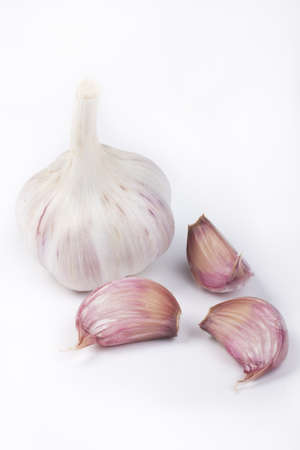Set of garlic on white background in vertical format photo