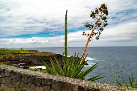Buenavista del Norte and the Atlantic Ocean, Tenerife, Canary Islands