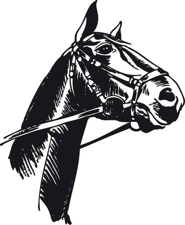 Horse with bridle, Retro Vector Illustration
