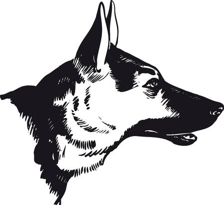 German shepherd dog, Retro Vector Illustration Çizim