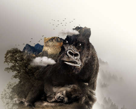 Double exposure of black gorilla in close up and a gorilla sleeping and rocky mountain with white clouds