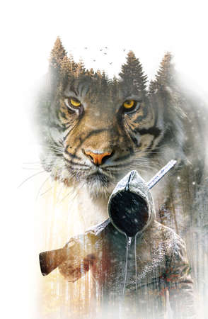 Double exposure of adult tiger and hunter with gun in the forest