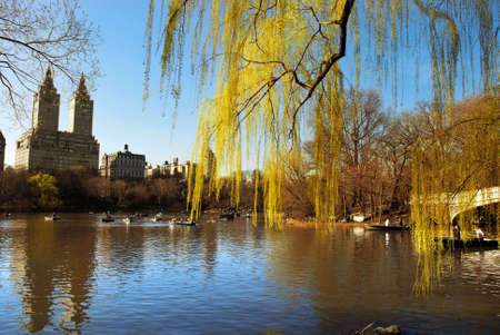 Central Park, New York Stock Photo