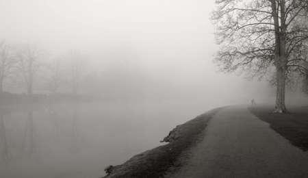 foggy landscape photo