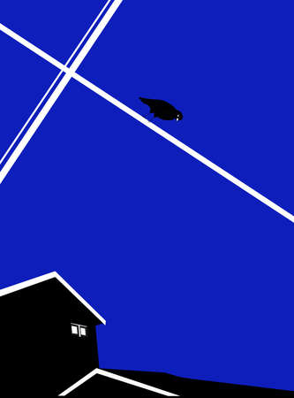 illustration of a bird looking down over a house, blue background