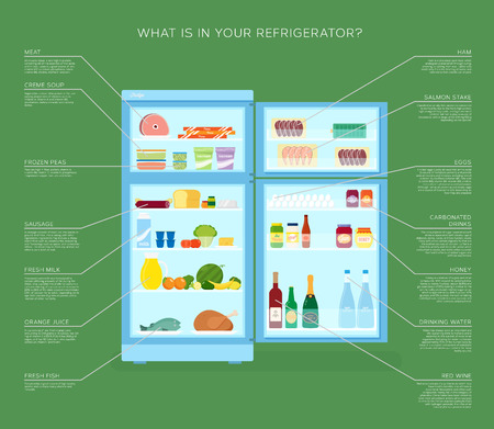 yoghurt: Infographic Refrigerator With Food Icons Flat Style Illustration Illustration