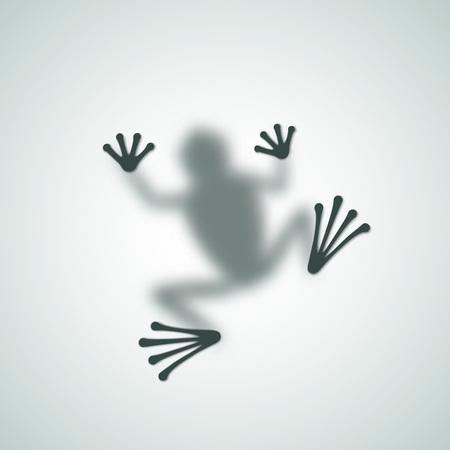rana: Difusa imagen de la rana Silueta Sombra abstracta del vector. Aislados. Vectores
