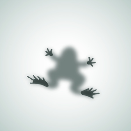 diffuse: Diffuse Toad Silhouette Shadow Abstract  Image. Frog Sitting on a Matte Glass. Isolated. Illustration