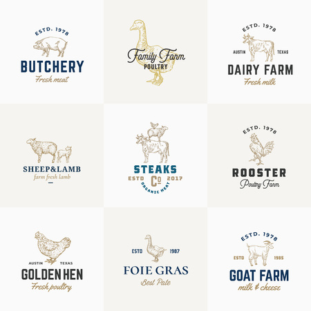 Premium Quality Retro Cattle and Poultry Vector Signs or illustration Templates Set. Hand Drawn Vintage Domestic Animals and Birds Sketches with Classy Typography, Pig, Cow, Chicken, etc.