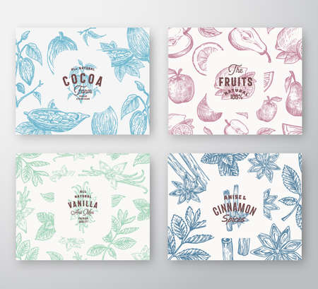 Hand Drawn Fruits, Cocoa Beans, Mint, Nuts and Spices Cards Set. Abstract Vector Sketch Pattern Backgrounds Collection with Classy Retro Typography and Vintage Labels. Isolated. Ilustracja