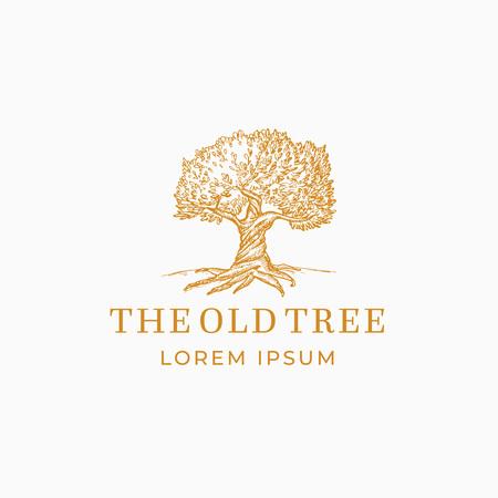 El signo, símbolo o logotipo abstracto del vector del árbol viejo. Silueta de bosquejo de roble dibujado a mano con tipografía retro. Emblema de la vendimia.