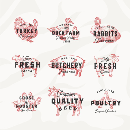 Retro Cattle and Poultry Vector Logo Templates Set. Hand Drawn Vintage Domestic Animals and Birds Sketches with Vintage Typography. Pig, Cow, Chicken, Rabbit, Turkey, etc. Meat Texture Background