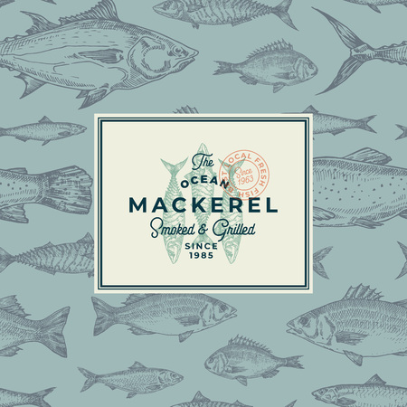 Hand Drawn Fish Vector Background Pattern. Abstract Package Sketch Card or Cover Template with Trendy Typography and Mackerel Emblem. Herring, Anchovy, Tuna, Dorado, Seabass and Salmon. Ilustrace