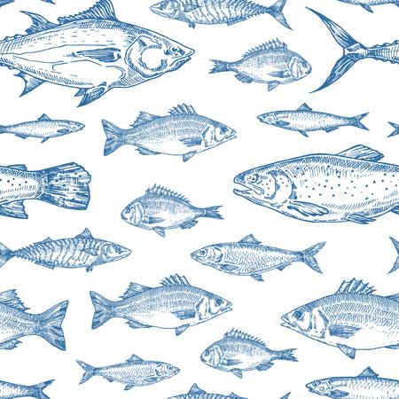 Handgezeichnete Ozean-Fisch-Vektor-nahtloses Hintergrundmuster. Sardelle, Heringe, Thunfisch, Dorado, Makrele, Wolfsbarsch und Lachs Skizzen-Karte oder Cover-Vorlage in blauer Farbe. Isoliert.