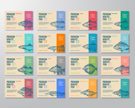 Ensemble de seize étiquettes de poisson de qualité supérieure. Conception ou étiquette d'emballage de vecteur abstrait. Typographie moderne et mises en page de fond de silhouettes de croquis de poisson dessinés à la main avec des ombres douces. Isolé.