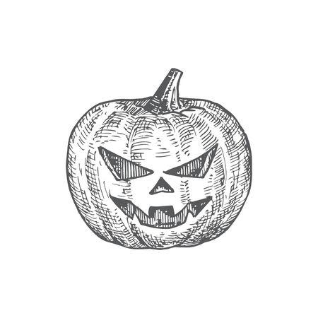 Hand Drawn Halloween Scary Pumpkin Vector Illustration. Abstract Jack Lantern Sketch. Engraving Style Drawing. Çizim