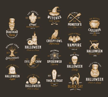 Vintage Style Halloween  Labels Template Big Set. Hand Drawn Vampire Bat, Scull, Tomb, Cat, Hat, Owl, Pumpkin, Cauldron and Ghost Sketch Symbols Collection. Retro Typography. Dark Background
