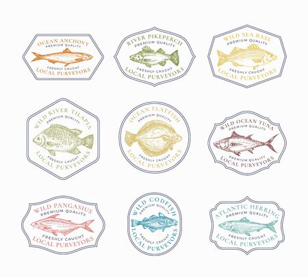 Fish Vintage Frame Badges Templates Set. Hand Drawn River and Ocean Fishes Sketch Emblems Bundle with Retro Typography.