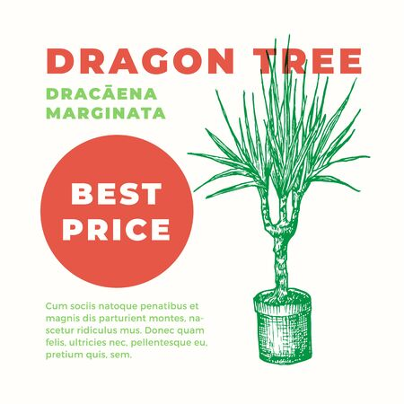 Dragon Tree Abstract Vector Sign or Label Template. Hand Drawn Potted Dracaena Sillhouette with Modern Typography Home Gardening Card. Houseplant Advertising Emblem or Package Label.