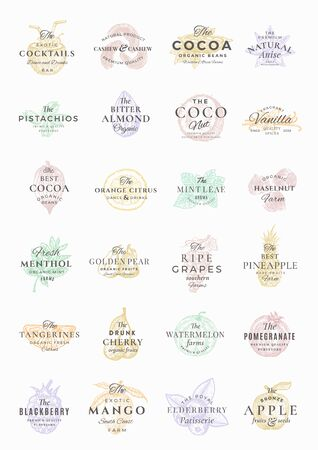 Premium Fruits, Berries, Nuts and Spices Elegant Labels Set. Abstract Vector Signs, Symbols or Templates Bundle. Hand Drawn Food Sketches with Retro Typography. Vintage Emblems Collection. Illustration