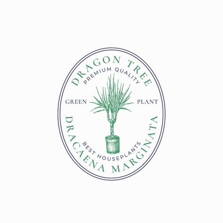 Dragon Tree Plant Badge Template. Hand Drawn Potted Dracaena with Leaves Sketch with Retro Typography and Borders. Vintage Premium Home Gardening Emblem in a Frame.