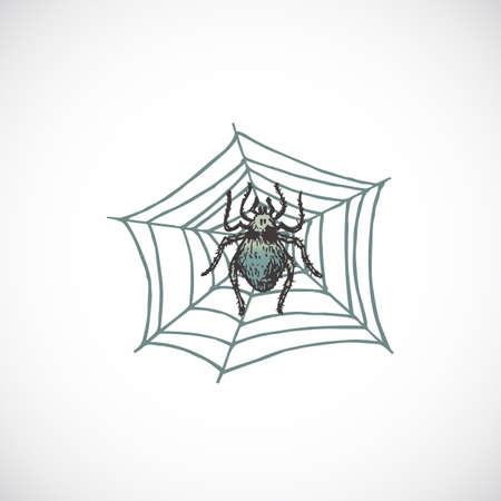 Hand Drawn Colorful Halloween Scary Spider on the Web Vector Illustration. Abstract Sketch. Holiday Engraving Style Drawing.