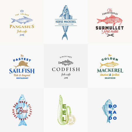 Premium Quality Seafood Vector Signs or  Templates Collection. Hand Drawn Fish Sketches with Typography, Surmullet, Eel, Sailfish, Cod, Dorado, Mackerel etc. Emblems bundle.