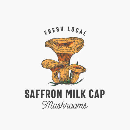 Fresh Local Mushrooms Abstract Sign, Symbol or  Template. Hand Drawn Colorful Saffron Milk Cap Group with Typography. Edible Plant Vector Emblem Concept. Çizim