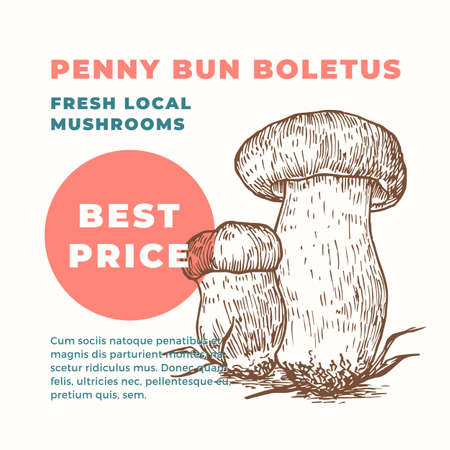Penny Bun Boletus Abstract Vector Sign Template. Hand Drawn Mushrooms Sillhouette with Modern Typography Card. Advertising Emblem or Package Label. Çizim