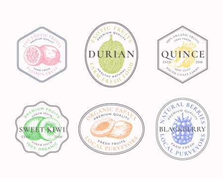 Fruits and Berries Frame Badges or Logo Templates Collection. Hand Drawn Papaya, Kiwi, Durian, Quince and Blackberry Sketches with Typography and Borders. Vintage Premium Emblems Set. Isolated