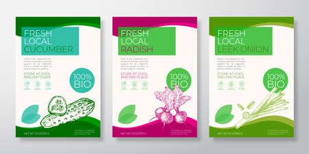 Fresh Local Vegetables Label Templates Set. Vector Packaging Design Layouts Collection. Typography Banner with Hand Drawn Cucumber, Radish and Leek Onion Sketch Silhouette Background Isolated 向量圖像
