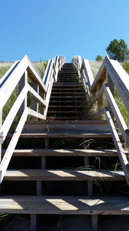 escalier bois: Wooden stairs with beach grass