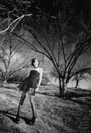 Punk fashion model in front of dead trees photo