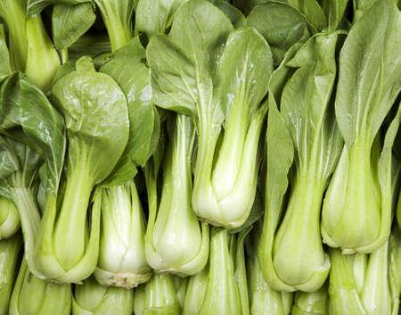 Many heads of crispy green  bok choy Stok Fotoğraf