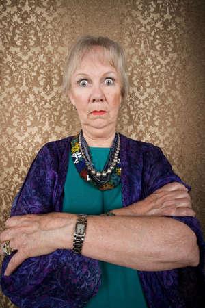 Retrato de una dama con excéntricas Superior Silvestre Ojos Foto de archivo - 4710917