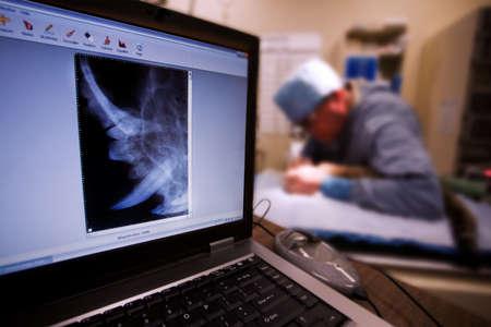 Dieren arts tandheelkundige operaties uitvoeren op kleine kat met röntgen op voorgrond