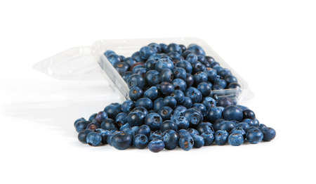 Plastic container overflowing with abundant fresh blueberries
